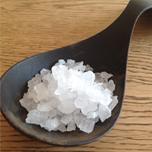 salt1_1